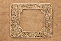Two frames made of rope with rye  grains on sackcloth Royalty Free Stock Photo