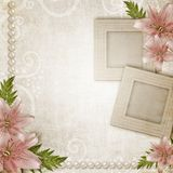 Two frames with pink lily Royalty Free Stock Photography