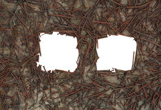 Two frames from a rusty nail in the background iso Royalty Free Stock Photo