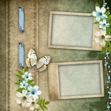 Two frames on vintage background Stock Images