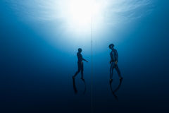 Two free divers ascending from the depth Stock Photography