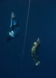 Two freedivers go up from the training depth. Two freedivers rise from the depth near the safety line in Blue Hole, Dahab, Egypt stock image