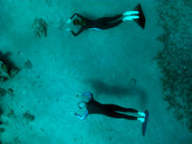 Two freedivers swim deeply at the sea bottom. Freediver found a heart-shaped coral at the Red sea bottom stock photography