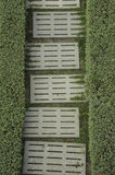 Two frence grass with white brick. Two frence grass with white brick the way bock Stock Images