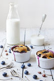 Two french clafoutis with blueberries and cherries on ceramic ramekins on rustic white vintage background with milk Royalty Free Stock Photography