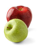 Two fresh apples. With water drops isolated on white background royalty free stock image