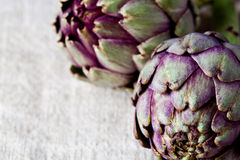 Two fresh artichokes Stock Images