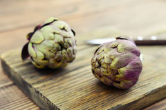 Two fresh artichokes Royalty Free Stock Photography