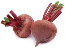 Two fresh Beets Royalty Free Stock Photography