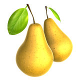 Two Fresh Beige color Pear. Foods and Dishes Series. Royalty Free Stock Photography
