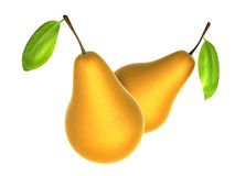 Two Fresh Beige color Pear. Foods and Dishes Series. Royalty Free Stock Photo