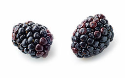Two fresh blackberries macro Royalty Free Stock Photo