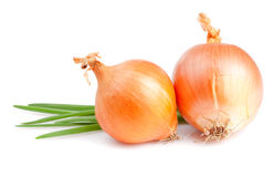Two Fresh bulbs of onion and Fresh Scallions Royalty Free Stock Image