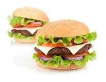 Two fresh burgers Stock Image