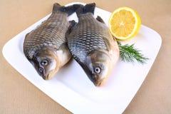 Two fresh carp on white plate with lemon Royalty Free Stock Photo