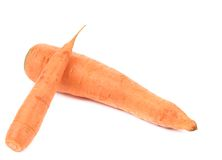 Two fresh carrots. Royalty Free Stock Image