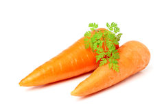 Two fresh carrots with leaves isolated. Royalty Free Stock Photography