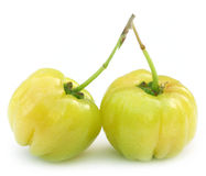 Two Fresh Cherry Fruits Stock Image