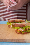 Two fresh chicken sandwich closeup royalty free stock photo