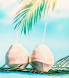 Two fresh coconut cocktails with tropical leaves at blue sky background with hanging palm leaves and sunshine. Tropical vacation. Summer holiday. Beach party royalty free stock photography