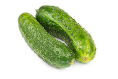 Two fresh cucumbers Royalty Free Stock Photo