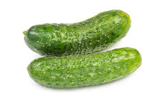Two fresh cucumbers Royalty Free Stock Photography
