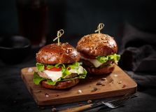 Two fresh delicious burgers stock photography