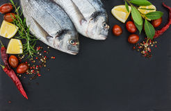 Two fresh dorado fish on black slate cutting board Royalty Free Stock Images