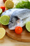 Two fresh dorado fish on board Royalty Free Stock Images