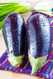 Two fresh eggplant and a bunch of green spring onions. Two fresh eggplant with drops of water and a bunch of green spring onions on towel Royalty Free Stock Image