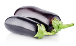 Two fresh eggplants Stock Photos