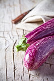 Two fresh eggplants Stock Images