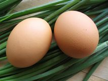 Two fresh eggs. On spring onion plant background royalty free stock images