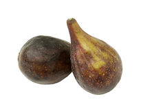 Two fresh figs Stock Images