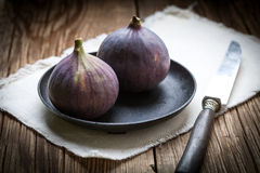 Two fresh figs. Royalty Free Stock Image
