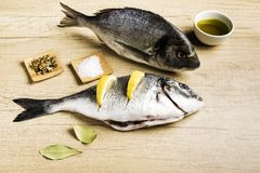 Two fresh fish Dorada with bay leaves, some pieces of lemon, a bowl of oil and some spices on a wooden table. Prepared for cooking royalty free stock photos