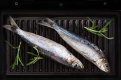 Two fresh fish on roast. Royalty Free Stock Photo