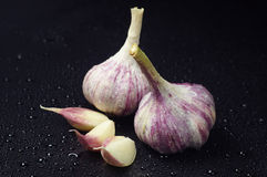 Two fresh garlic and cloves Stock Photography