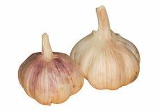 Two Fresh garlic Stock Photography