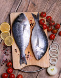 Two fresh gilt-head bream fish on cutting board with lemon,onion and cherry tomato. Vertical Royalty Free Stock Photo