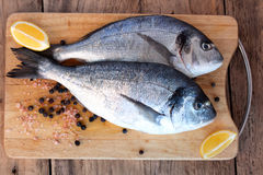 Two fresh gilt-head bream fish on cutting board. Two fresh gilt-head bream fish with lemon, pink salt and pepper on cutting board royalty free stock photos