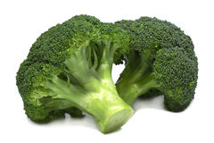 Two fresh green broccoli. Stock Photography