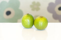 Two fresh green limes Royalty Free Stock Image
