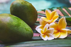 Two fresh green mango on the wooden table with tropical flowers Royalty Free Stock Photo
