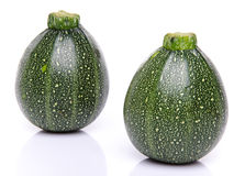 Two fresh green round Zucchini Royalty Free Stock Images