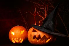 Two fresh halloween pumpkin on black Royalty Free Stock Photos