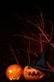 Two fresh halloween pumpkin on black. A two fresh halloween pumpkin on black Royalty Free Stock Images