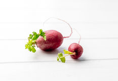 Two fresh homegrown raddishes sitting on table Stock Photography