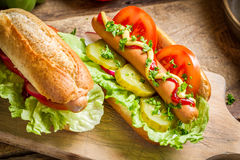 Two fresh homemade hot dog with mustard and ketchup Stock Images