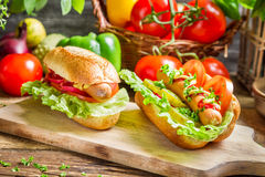 Two fresh homemade hot dog Royalty Free Stock Image